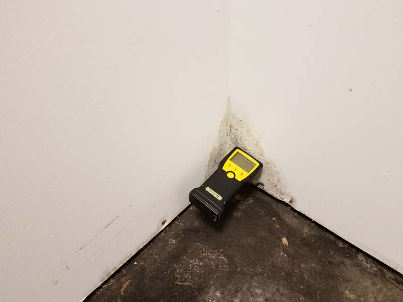 Mold with moisture meter